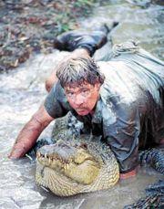 Steve caught Croc